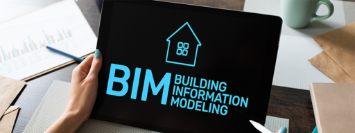 BIM Implementation Project Managers
